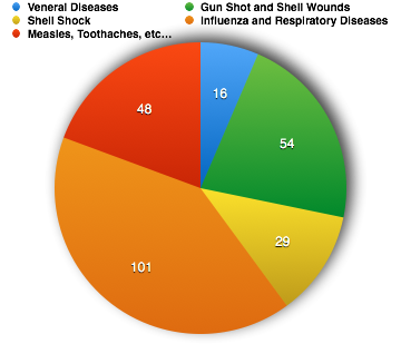 PIE chart of different diseases and injuries seen in the transcribed medical case sheets